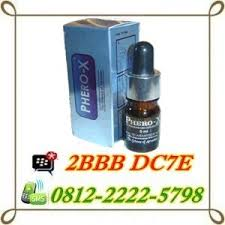 jual parfum phero x asli di makassar 081222225798