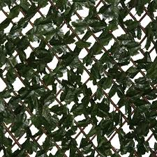 ez ivy expandable lattice with ivy 8030 the home depot