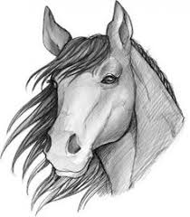 how to sketch a horse step by step sketch drawing technique
