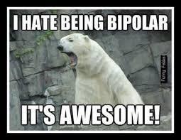 Coke Bear Meme - 3391 best funny images on pinterest funny stuff ha ha and funny