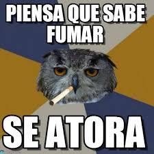 Art Student Owl Meme - art owl meme 28 images image 270767 art student owl know your