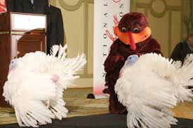 gobble gobble national thanksgiving turkey returns to virginia