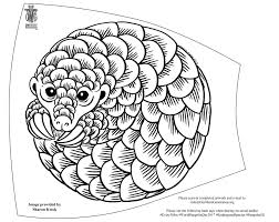 endangered species coloring pages endangered species free download shaldon zoo shaldon wildlife