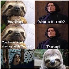 Sloth Jokes Meme - sloth stahp