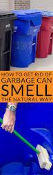 Sulphur Smell In Basement Best 20 Eliminate House Odors Ideas On Pinterest Lime Essential