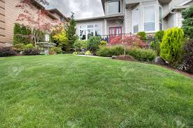 green grass lawn in house front yard manicured garden with water