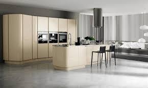 Trend Kitchen Cabinets Kitchen Trend Kitchen Design Modern Style Cabinets In Kitchen
