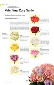 roses colors yellow magazine features the many colors of roses