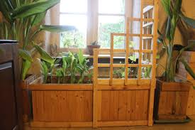 pallet wood corner trellis planter for indoor winter vegetables