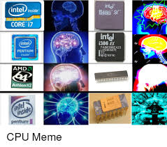 si e d athlon 25 best memes about amd athlon amd athlon memes