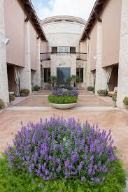 lexus flowers houston texas family trip to jw marriott in san antonio texas life by lee