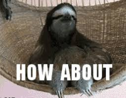 Sloth Meme Pictures - sloth meme gifs get the best gif on giphy