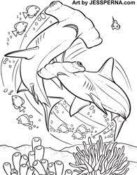 100 coloring pages sharks printable coloring pages adorable