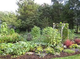 Small Backyard Vegetable Garden Ideas Garden Ideas Vegetable Garden Planner Raised Garden Bed Ideas
