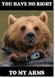 Right To Bear Arms Meme - a well regulated militia being necessary to the security of a free