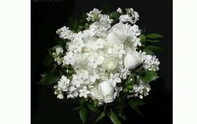 white flower white flower bouquet
