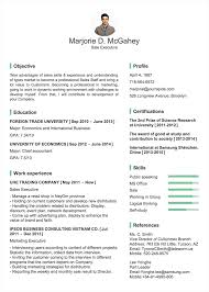 Vp Of Marketing Resume Create A Professional Resume Cv In Minutes Without Photoshop Ai