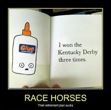 Kentucky Meme - its derby day funny kentucky derby memes satire girlsaskguys
