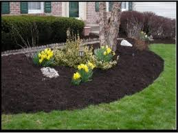 spend less time watering and weeding by mulching your yard