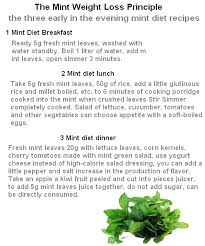 mint weight loss diet foods for weight loss the truth about it