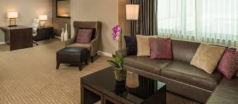 Great Rooms Tampa - hilton tampa downtown hotel