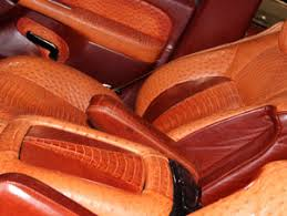 Brown Car Interior Automotive Roje Exotic Leather