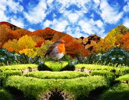Amazing Pictures Of Nature by Amazing Pictures For Backgrounds Pixelstalk Net