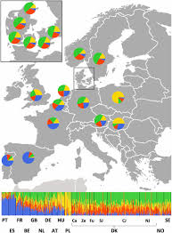 Genetic Map Of Europe by Nationwide Genomic Study In Denmark Reveals Remarkable Population
