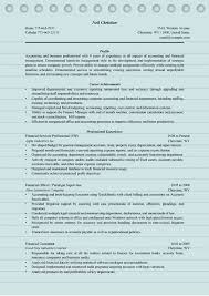 4 professional finance resume examples ms word doc format