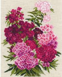 sweet william flowers riolis sweet william flowers cross stitch kit 123stitch
