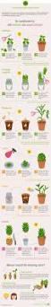 Schlafzimmer Hoffmann M El 72 Besten Infografiken Rund Ums Essen Bilder Auf Pinterest