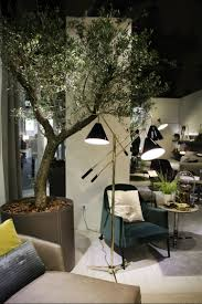 Room With Plants Inspiring Living Room Ideas With Plants