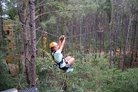 Backyard Zip Line Without Trees by Charleston Zip Line Adventures Zip Line Canopy Tour Charleston