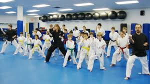 Hamilton Of Martial Arts Jiu by Martial Arts Karate U0026 Kickboxing In Stoney Creek U0026 Hamilton