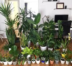 r indoorgarden