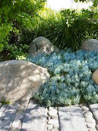 597 best rock garden ideas images on pinterest front yards