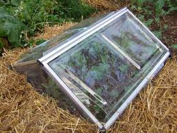 protective devices for fall and winter vegetable gardens u2014 veggie