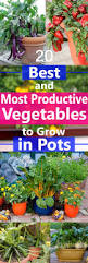 Vegetable Container Gardening Guide by Best Vegetables To Grow In Pots Most Productive Vegetables For