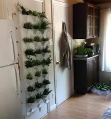 Home Vertical Garden by Minigarden In Action Kim M U0027s Vertical Garden Minigarden Us