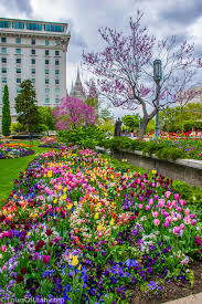 temple square flowers things to do in salt lake city u2014 tours of utah