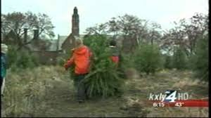 hutton settlement selling trees kxly