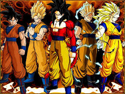 Dragon Ball 6898257