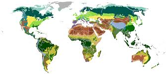 Russian Boreal Forest Disturbance Maps by Outline Of Forestry Wikiwand