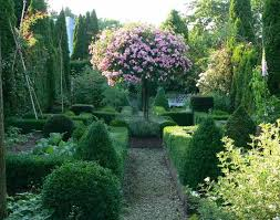 English Box Topiary - 433 best garden topiary images on pinterest landscaping formal