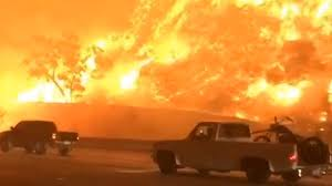 California Wildfire Cat by Watch Drivers Flee A Fire Engulfing California Freeway