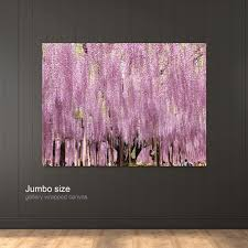 ashikaga flower park ashikaga japan good earth canvas