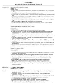 sales manager resume inside sales manager resume sles velvet