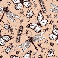 vintage sketch of different insects dragonfly butterfly