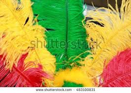 feather head dress stock images royalty free images u0026 vectors