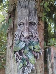 25 unique tree faces ideas on scrub for